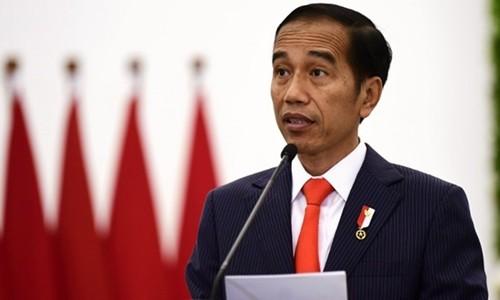 Le président indonésien attendu au Vietnam - ảnh 1