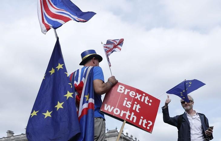 Des conservateurs partisans d'un Brexit dur veulent renverser Theresa May - ảnh 1