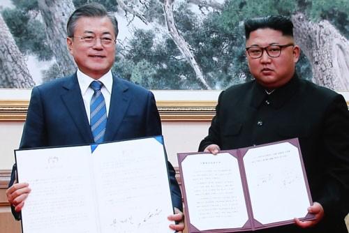 Le monde salue les résultats du 3e sommet intercoréen - ảnh 1
