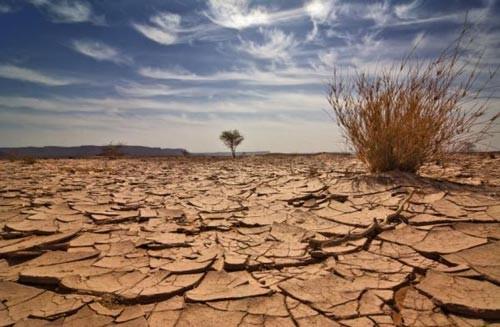 Die nationale Strategie zum Klimawandel - ảnh 1