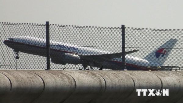 Zweiter Flugschreiber des verunglückten malaysischen Flugzeugs gefunden - ảnh 1