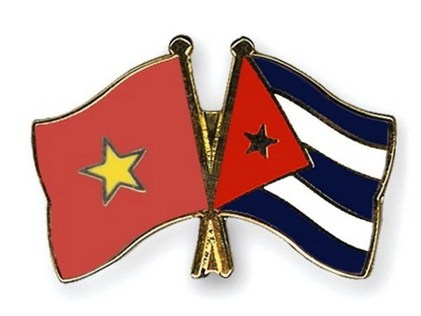 Besondere solidarische Beziehungen zwischen Vietnam und Kuba - ảnh 1