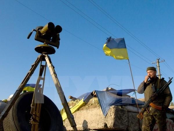 Ukrainisches Parlament verabschiedet Gesetzesentwurf über Kriegsrecht - ảnh 1