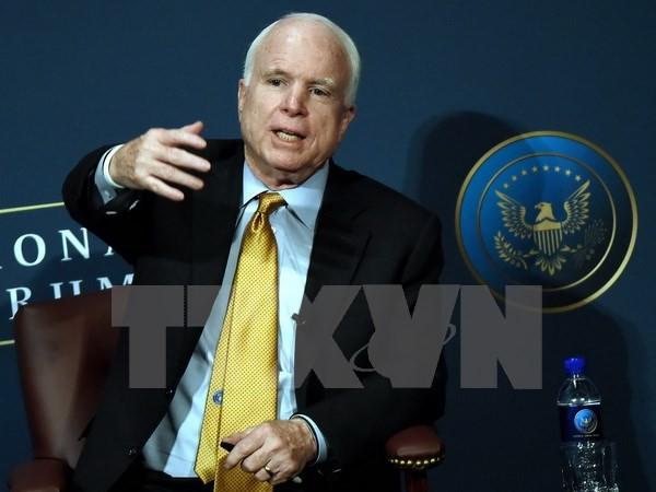 Der ukrainische Präsident ernennt John McCain zum Berater - ảnh 1