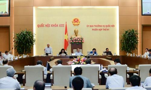 Abschluss der 41. Sitzung des Ständigen Parlamentsausschusses - ảnh 1