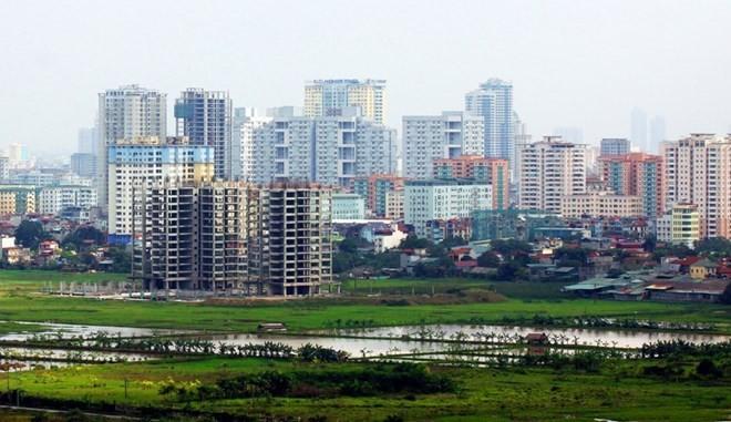 Verbesserung der Effektivität und Transparenz bei Bodenverwaltung in Vietnam - ảnh 1