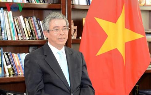 Diplomaten: Brücken zwischen Vietnam und anderen Ländern - ảnh 1