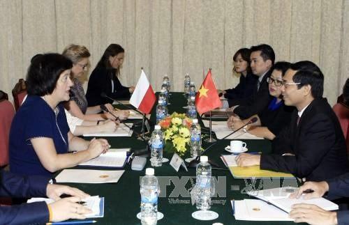 Politische Konsultation zwischen Vietnam und Polen - ảnh 1