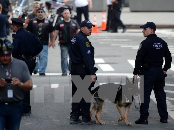 USA verschärfen Sicherheit in U-Bahnen in New York - ảnh 1