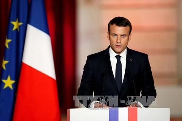 Zusammenarbeit zwischen Frankreich und Türkei zum Stopp des Konflikts in Syrien - ảnh 1