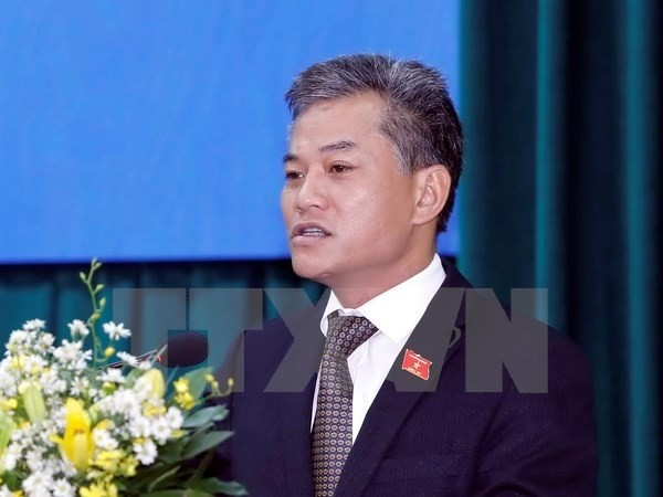 Unterstützung und Solidarität internationaler Freunde ist für Vietnam von großer Bedeutung - ảnh 1