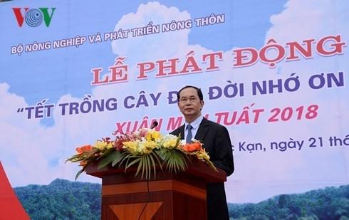 Der Staatspräsident eröffnet das Pflanzenfest zum Neujahr - ảnh 1