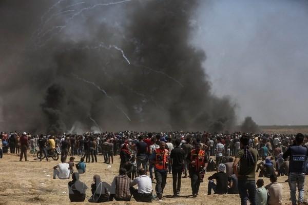 ICC beobachtet die Gewalt im Gazastreifen - ảnh 1