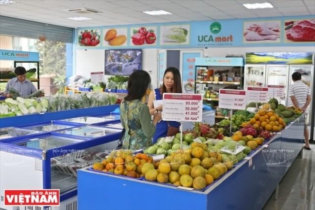 Verstärkung von Verkauf landwirtschaftlicher Produkte auf traditionellen Märkten - ảnh 1