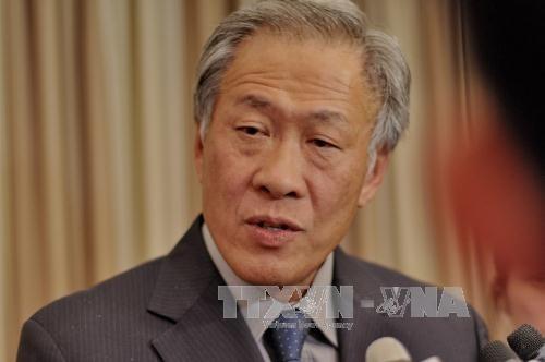 Singapur ruft ASEAN und China zur Vervollkommnung des COC auf - ảnh 1