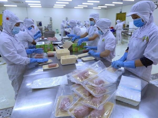 Moody's: Potenzial zum starken Wachstum für Vietnam - ảnh 1