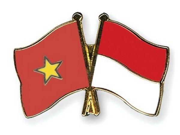 Entfaltung der Chancen zur Zusammenarbeit zwischen Vietnam und Indonesien - ảnh 1