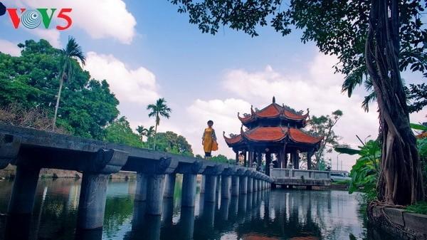 Die vietnamesische Kulturidentität in der Pagode Nom - ảnh 1