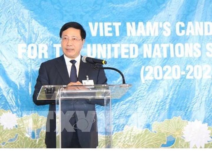 Pham Binh Minh ruft Länder zur Unterstützung der Kandidatur Vietnams auf - ảnh 1
