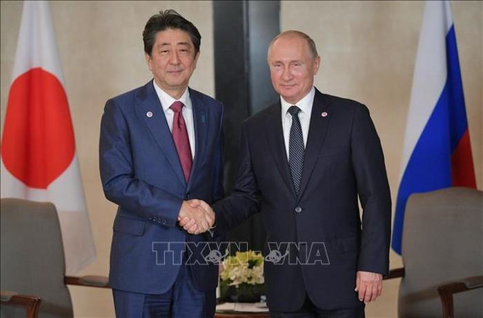 Russland und Japan streben Unterzeichnung des Friedensvertrags an - ảnh 1