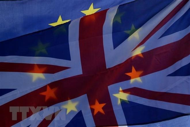Brexit: EU ist bereit für Verschiebung des Brexit-Austrittstermins - ảnh 1