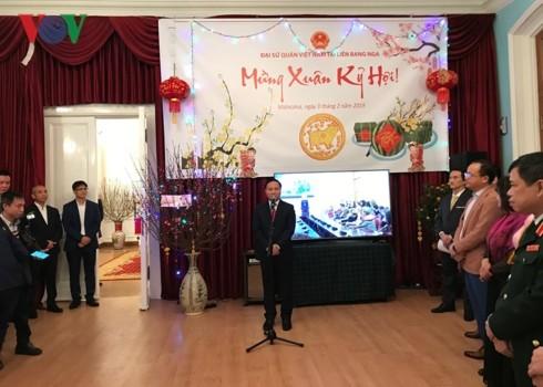 Auslandsvietnamesen feiern das Jahr des Schweins - ảnh 1
