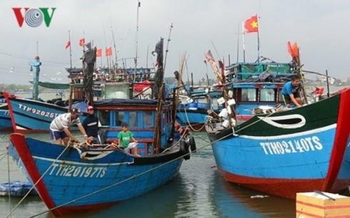 Befristete Erschließung zum Management und zur Bewahrung von Meeresfrüchten - ảnh 1