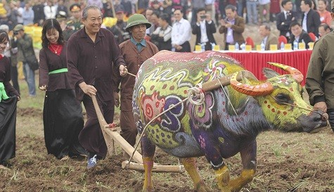 Vizepremierminister Truong Hoa Binh nimmt am Pflugfest in Ha Nam teil - ảnh 1