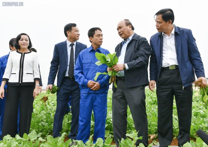 Premierminister Nguyen Xuan Phuc ermutigt Produktions- und Geschäftsaktivitäten in Hanoi und Ninh Binh - ảnh 1