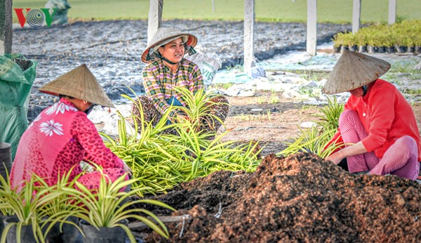 Partner für nachhaltige Landwirtschaftsentwicklung in Vietnam und öffentlich-privater Dialog  - ảnh 1