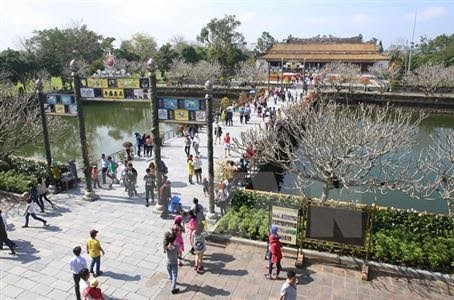 越南旅行社向游客出售数千条暑期廉价旅游线路 - ảnh 1