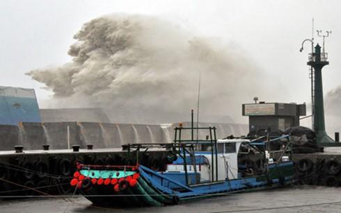"""中国将台风""""莫兰帝""""的海浪预警级别提升至红色 - ảnh 1"""