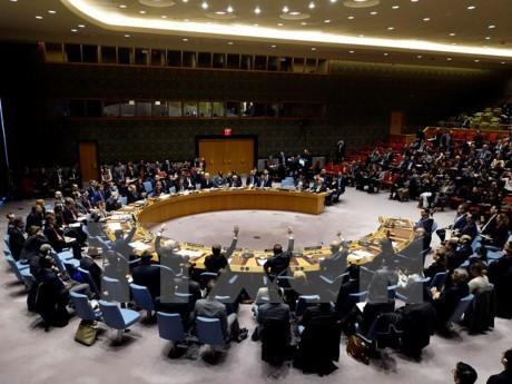 越南呼吁联合国优先拟定预防长期冲突战略 - ảnh 1