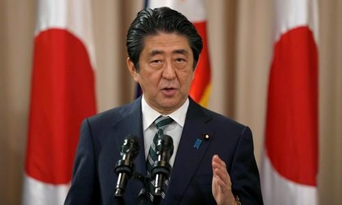 日本首相安倍晋三开始对越南进行正式访问 - ảnh 1