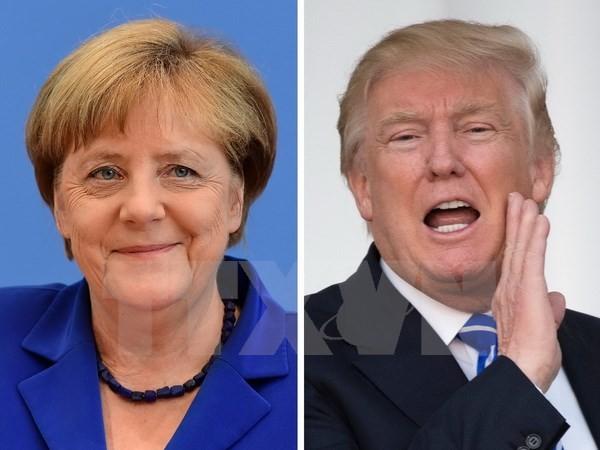 欧盟与美国新政府关系陷入紧张 - ảnh 1