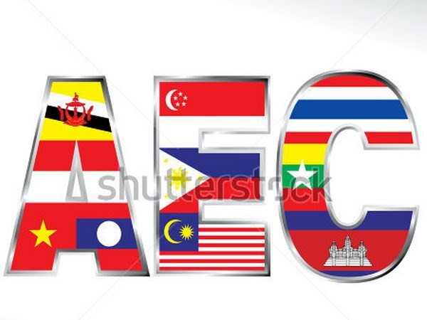 推动合作促进东盟经济共同体发展 - ảnh 1
