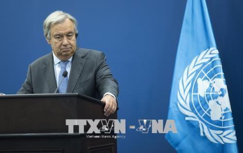 联合国秘书长对韩朝对话表示欢迎 - ảnh 1