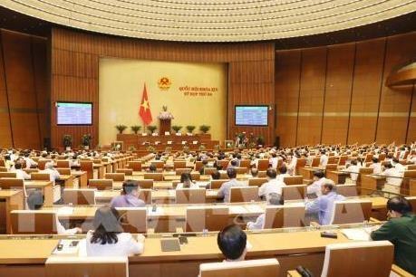 国会代表对越南第十四届国会第五次会议予以厚望 - ảnh 1