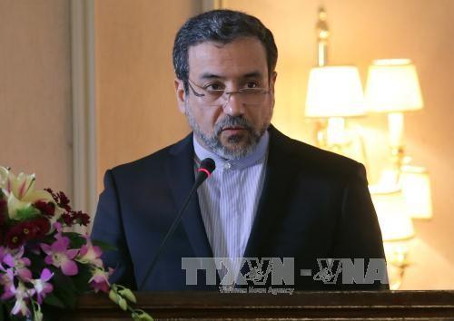 JCPOA联合委员会召开会议 评估美国退出伊朗核协议有关情况 - ảnh 1