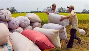 Konferenz der Welternährungsorganisation eröffnet in Hanoi - ảnh 1