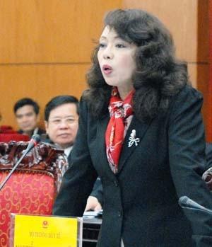 Anhörung einiger Minister bei der Sitzung des ständigen Parlamentsausschusses - ảnh 1