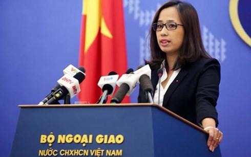 Vietnam protestiert gegen Ausbau auf den Steininseln und Riffen in Hoang Sa und Truong Sa - ảnh 1