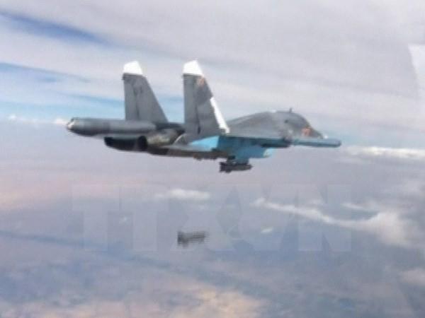 USA und Russland streben eine Vereinbarung über Flugsicherheit in Syrien an - ảnh 1