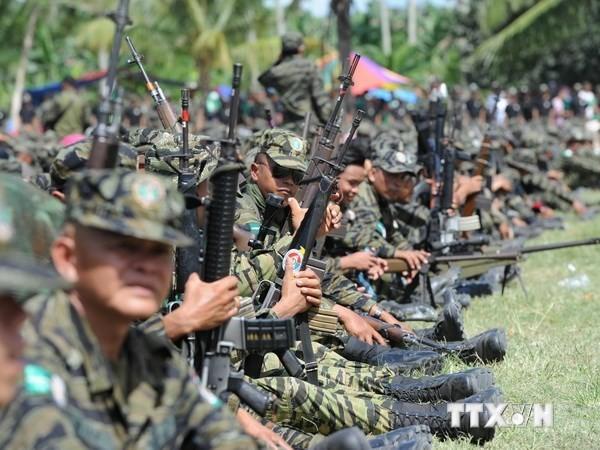 Vietnam verpflichtet sich, gemeinsames Ziel der Abrüstung anzustreben - ảnh 1