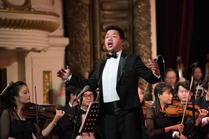 """Das Programm """"V-Concert: Konzert zum Neujahr"""" - ảnh 1"""