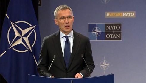 Nato-Verteidigungsminister tagen in Brüssel - ảnh 1