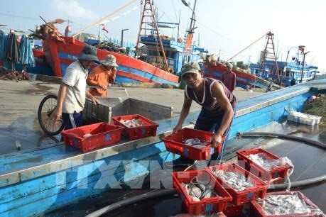 Vietnam bemüht sich um Umsetzung der Vorschläge der EC über Fischerei - ảnh 1