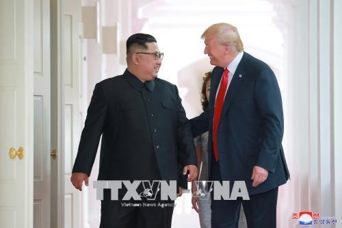 Nordkorea betont Disziplin zum Respekt der Souveränität in internationalen Beziehungen - ảnh 1