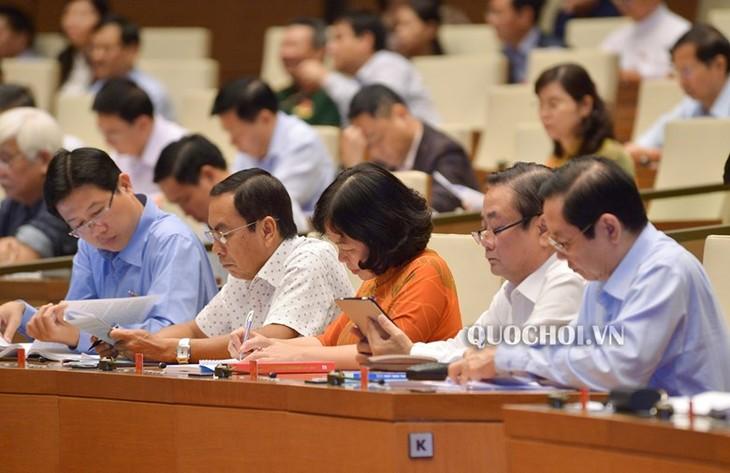 Abgeordnete diskutieren über Staatsinvestitionen - ảnh 1