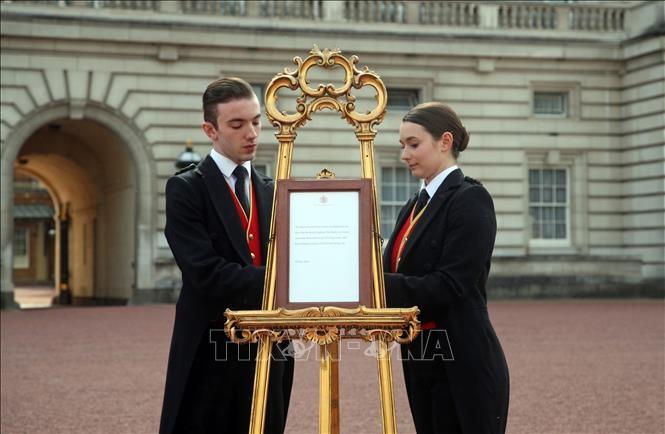 Britische Königsfamilie begrüßt neues Mitglied - ảnh 1